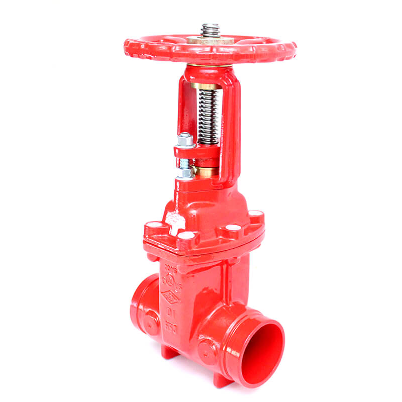 RG OSY Gate Valves